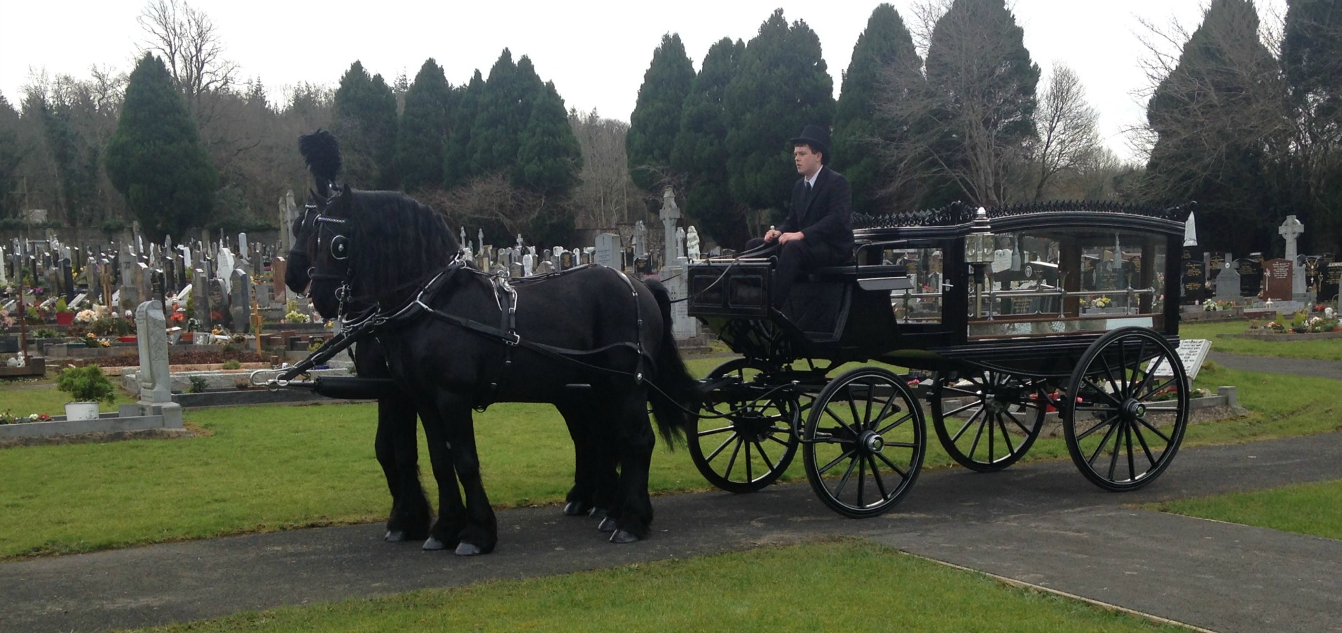 Funeral Horse and Carriage Hearse