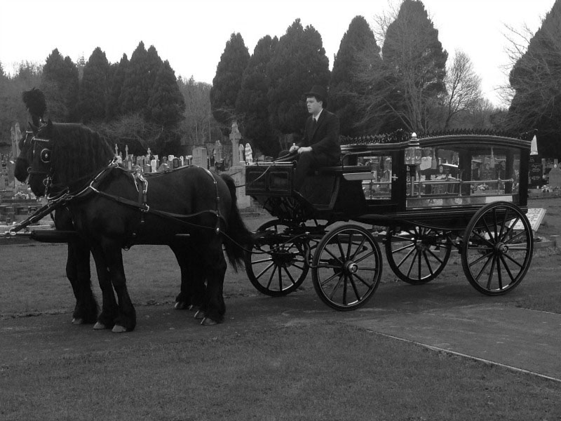 funeral horse and carriage